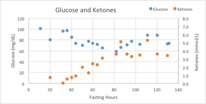 fast 1 glucose and ketones