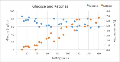 glucose and ketones2